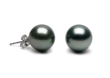 Black Tahitian Pearl Stud Earrings 11-12 mm AA+ or AAA