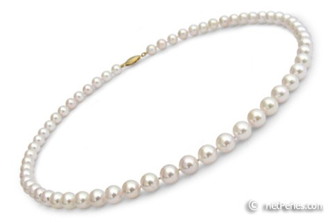 16-inch Akoya Pearl Necklace, 6.5-7 mm, white AA+ or AAA