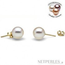 White Freshadama Freshwater Pearl Stud Earrings 6-7 mm