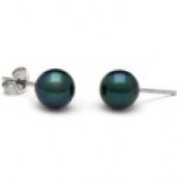 Black Akoya Pearl Stud Earrings 7-7.5 mm AA+ or AAA