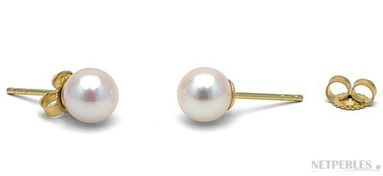 White Akoya Pearl Stud Earrings 6-6.5 mm AA+ or AAA