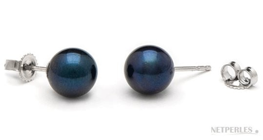 14k Gold Black Akoya Pearl Stud Earrings 7.5-8 mm AA+ or AAA