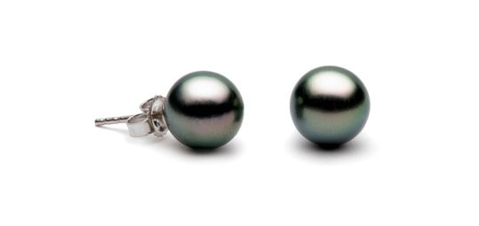 Black Tahitian Pearl Stud Earrings 8-9 mm AA+ or AAA