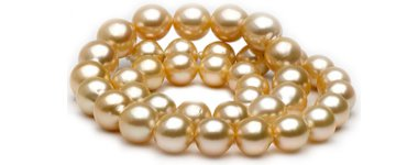 Golden South Sea Cultured pearls