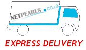 Express Shipping with Netpearls.co.uk